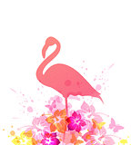 Summer background with pink flamingo