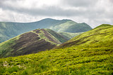 Amazing carpathian mountains