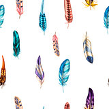 Seamless pattern with colorful detailed bird feathers. Vector illustration.