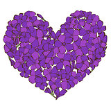 Heart of violet phlox flowers isolated on white background. Vector illustration.
