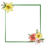 Colorfull lily flowers in frame isolated on white background. Ready template for your design. Vector illustration.
