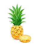 Pineapple with green leaf. Tropical fruit.