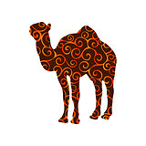 Camel mammal color silhouette animal