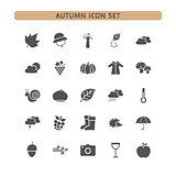 Autumn icon set on a white background