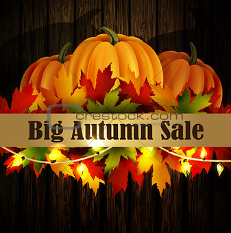 autumn special sale poster on wood background