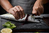 young man cutting a fresh mackerel