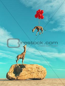 A giraffe standing on a large rock
