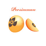 Vector orange sweet persimmon