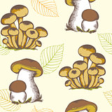 Forest mushrooms and falling leaves