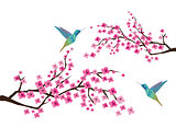 Cherry Blossom with Hummingbirds
