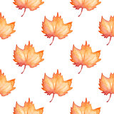 Pattern with maple leaves