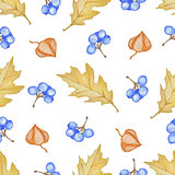 Oak leaves and blue berries