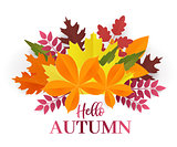 Paper cut autumn leaves set. Fall leaves colorful paper collection. Vector paper art style illustration