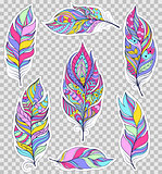 Set of colorful feathers