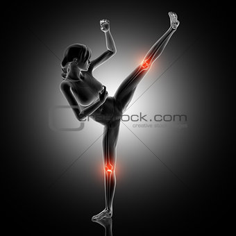 3D female figure in kick boxing pose with knee joints highlighte