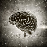 3D grunge style brain image on a DNA strands background