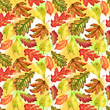 Seamless pattern with red, yellow and green-yellow autumn leaves on colorful background. Endless artwork hand-drawn. Floral wallpaper autumn plant forest. Watercolor illustration