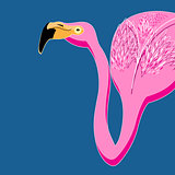 Vector portrait of pink flamingos
