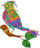 Fantasy bird. hand drawn doodle. adult antistress coloring page