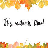 A frame of different autumn leaves. Ready template for your design. Vector illustration