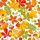 Seamless pattern Autumn falling leaf isolated on white background.
