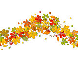 Seamless border Autumn falling leaf isolated on white background.