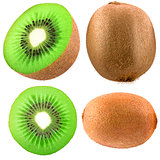 Collection of kiwi isolated on white background