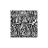 Zebra square texture fabric style vector for tattoo, T-shirts, logo