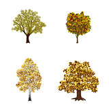 set of trees with yellow leaves