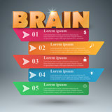 Brain 3d business infographics.