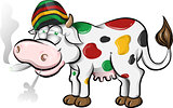 jamaican cow cartoon