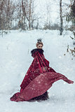 Princess in a red cloak in the snow