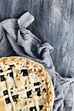 Blueberry Pie over Painted Background