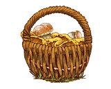 Wicker basket full of mushrooms orange cap boletus and chanterelles isolated on white background. Vector Illustration