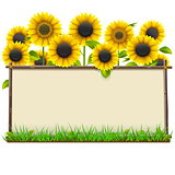 Vector Wooden Frame with Sunflowers