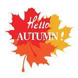 Vector hello autumn