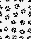 prints of dog paw