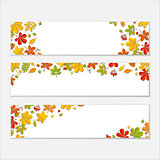 Horizontal Banner set with Autumn falling leaf on white background.
