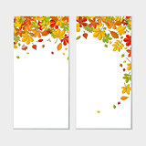 Banner set with Autumn falling leaf isolated on white background.