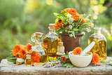 Variety of fresh herbs, calendula and oils