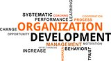word cloud - organization development