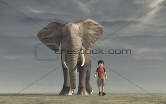 The boy goes and a big elephan