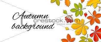 Autumn falling leaf background.