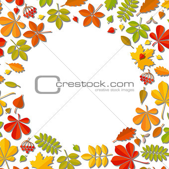 Autumn falling leaf isolated on white background.