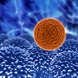 3D virus cell medcical background