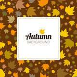 Autumn leaves seamless pattern for new background