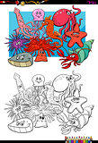sea life animal characters coloring book
