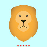 Lion head it is icon .