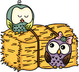 Couple owl with bale of hay