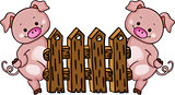 Two pigs with wooden fence